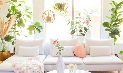 Φέρε τον κήπο στο σαλόνι σου!