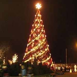 XXL Χριστουγεννιάτικα Δέντρα για Μεγάλους Χώρους