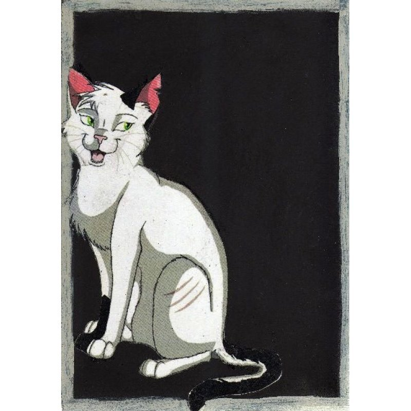 Πονηρή γάτα - Χειροποίητος Μαυροπίνακας 20X30 εκατοστά