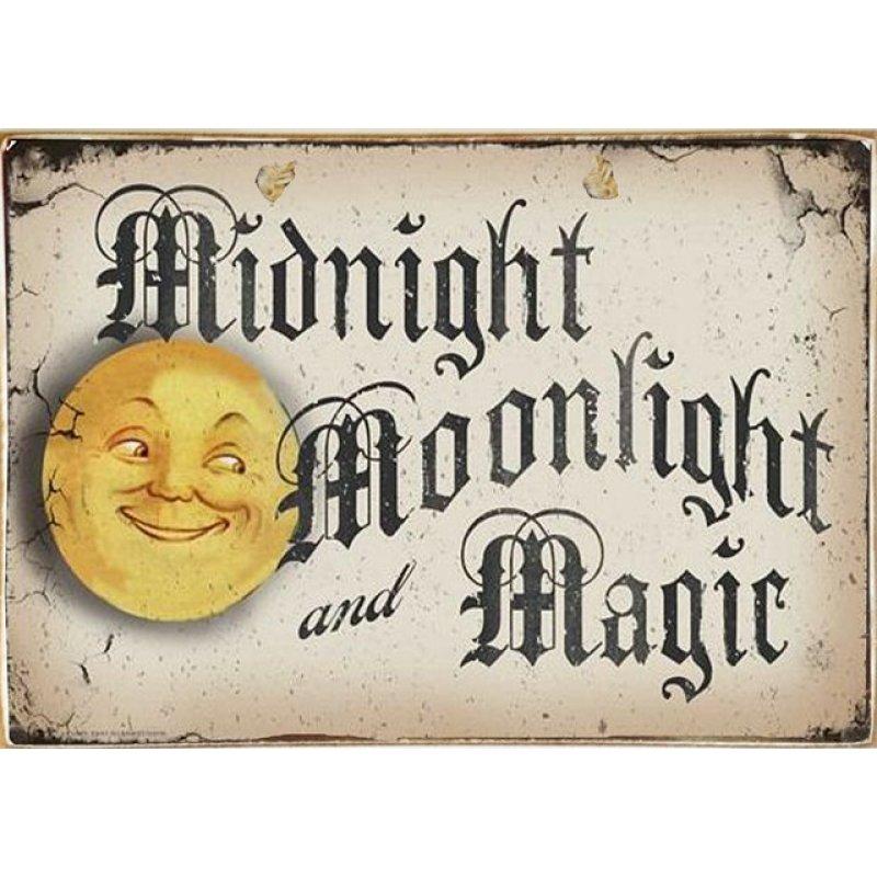 Ρετρό Πίνακας Χειροποίητος Moonlight 30 x 20 cm